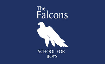 Flying Falcon Newsletter – Christmas Edition