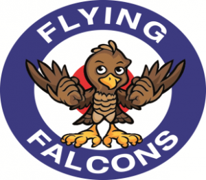 flying-falcons